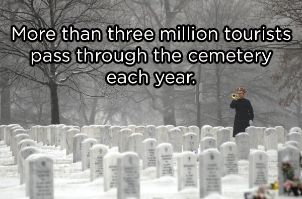 Interesting Facts About Arlington Cemetery