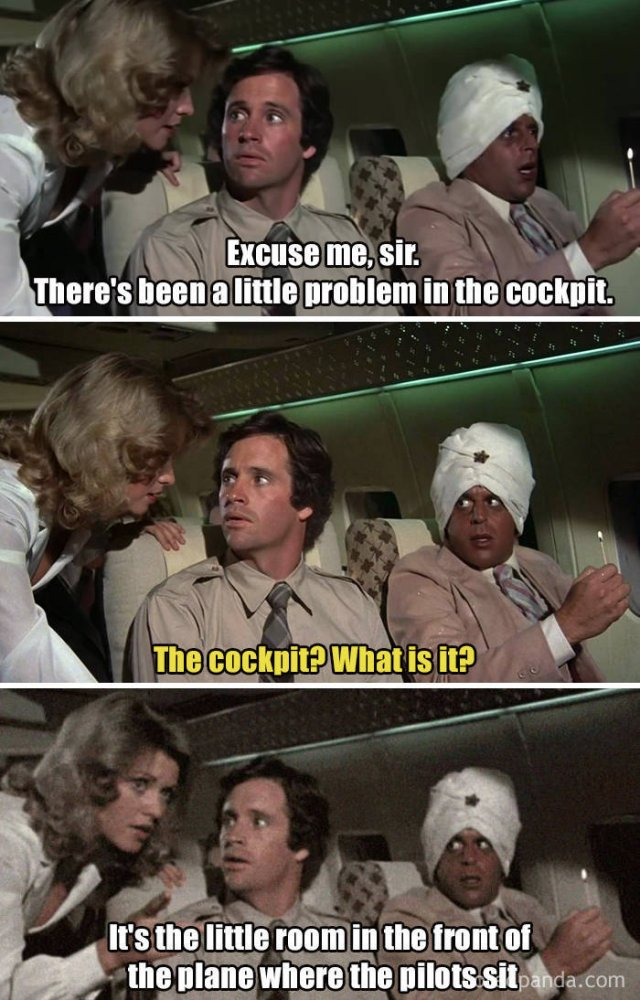 """Facts About """"Airplane"""""""