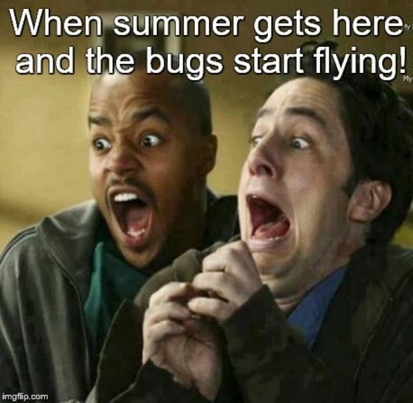Get Ready For The Summer With This Summer Memes