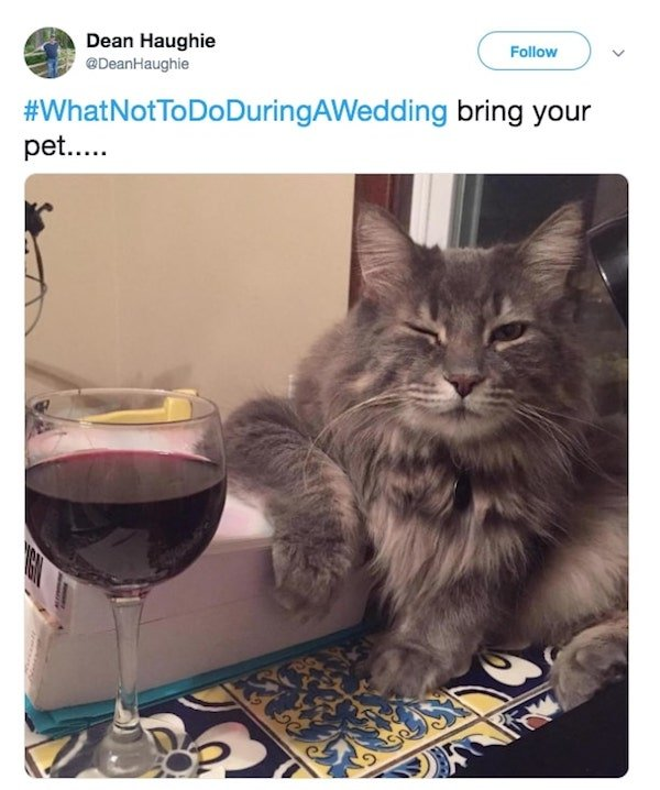What Not To Do During A Wedding