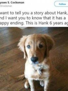 Hank Is A Hero