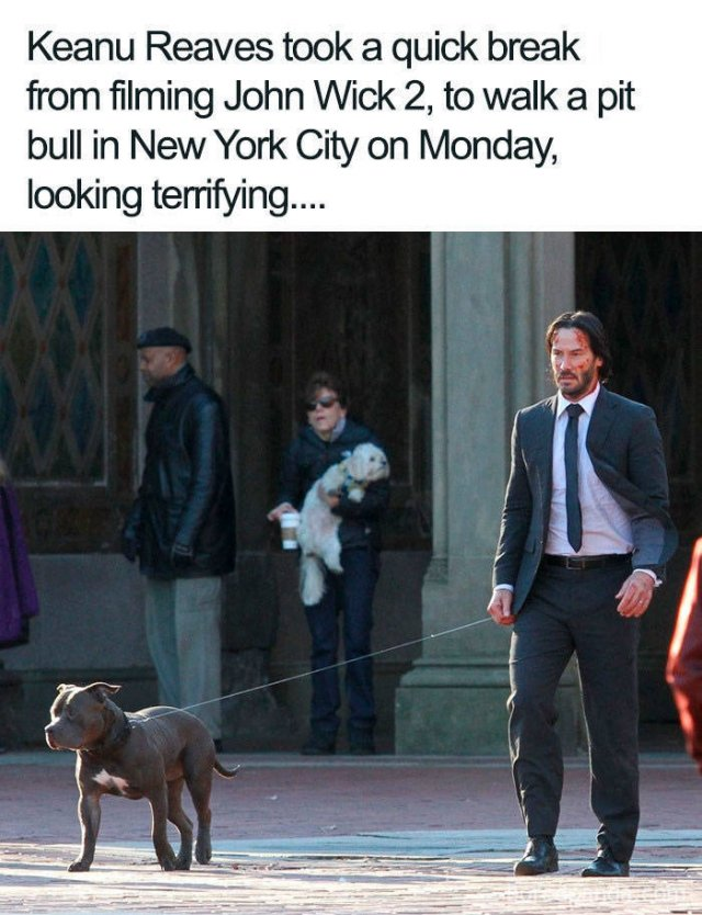 Keanu Reeves Is A Great Guy