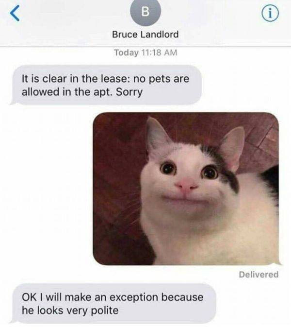 Funny Pictures, part 8