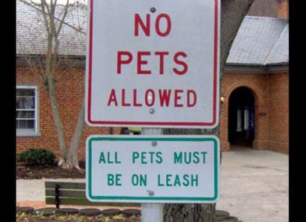 Ironic Signs