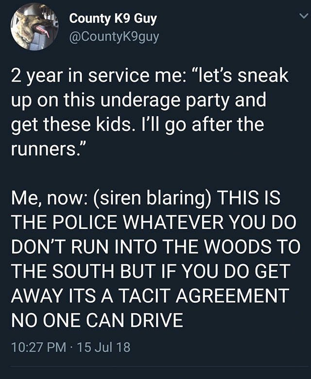 Police Memes, part 2