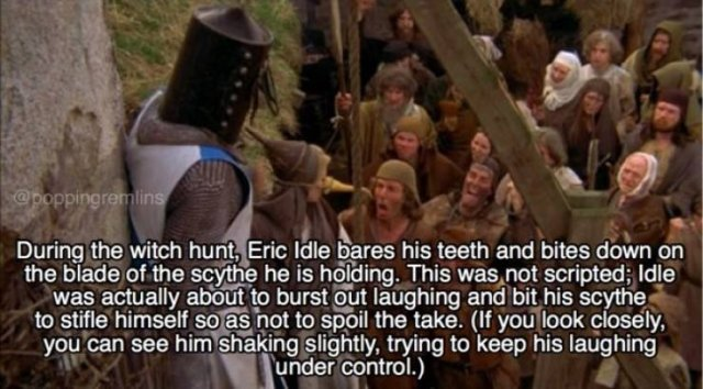 """Monty Python And The Holy Grail"" Facts"