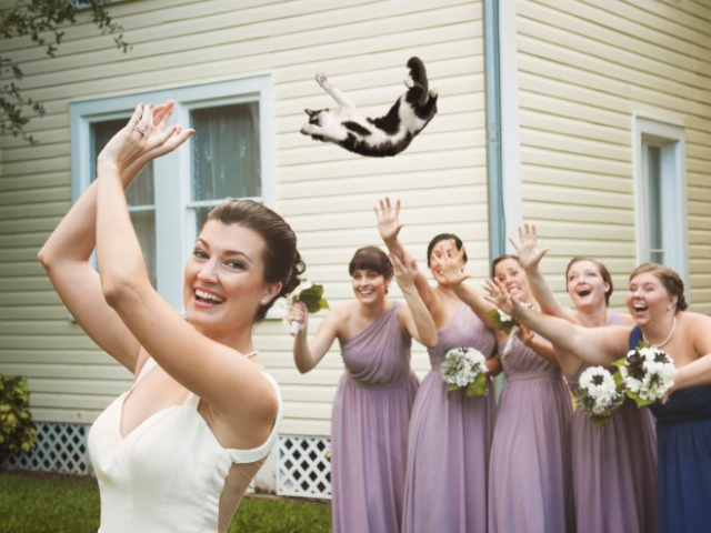 Bridal Bouquets Replaced With Cats