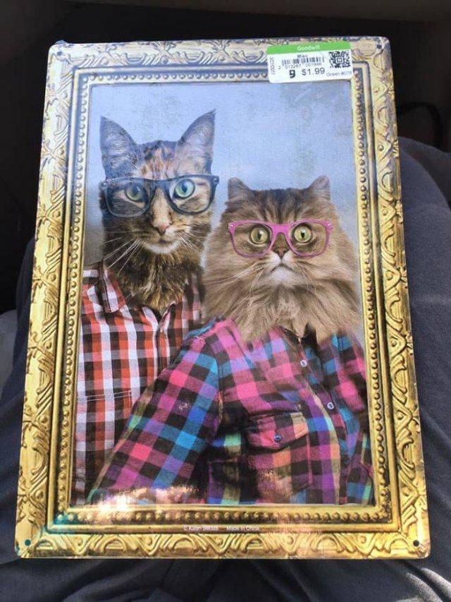 Found At Thrift Shops, part 2