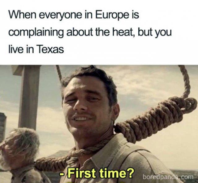 Europe Summer Heatwave Memes