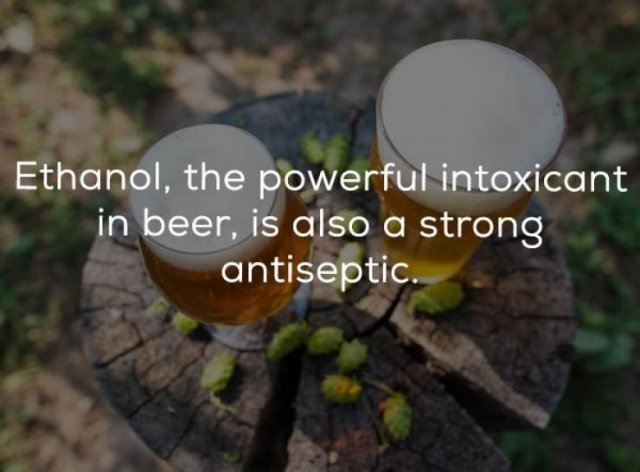 Beer Facts