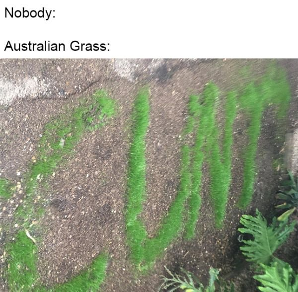 Australia Can Be Good And Bad At The Same Time