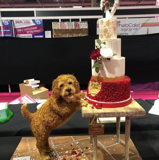 Awesome Cakes, part 2
