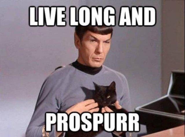 """""""Star Trek"""" Memes"""