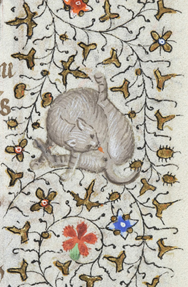 Medieval Paintings of Cats Licking Their Butts