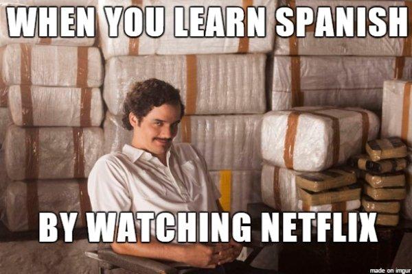 Netflix Memes