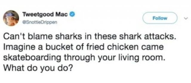 Shark Week Memes