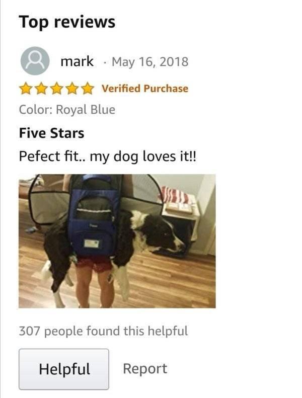Funny Amazon Reviews, part 2