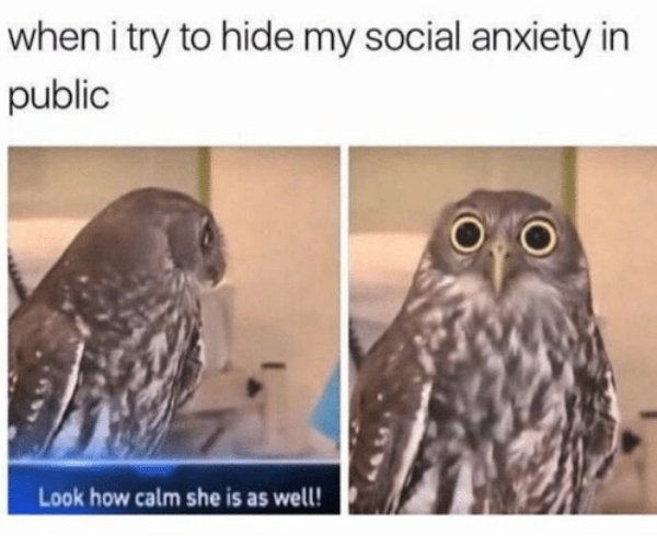 Memes About Anxiety, part 3