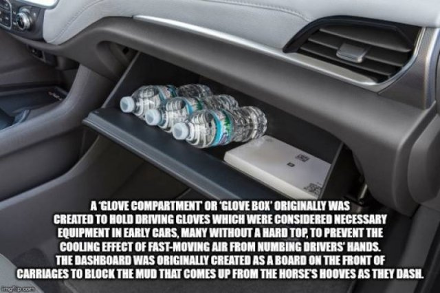 Interesting Facts, part 73