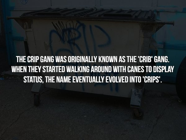 Gang Facts