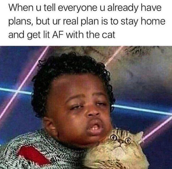 Weed Memes, part 2