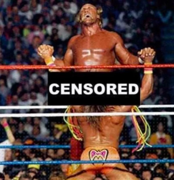 Hilarious Unnecessary Censorship