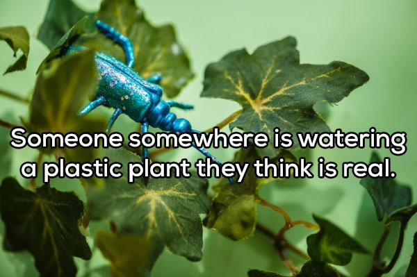 Shower Thoughts, part 87