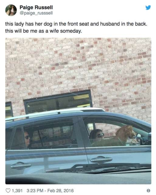 These People Love Their Dogs Too Much