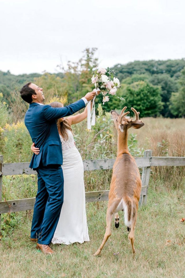 A Wedding Photoshoot Interrupted