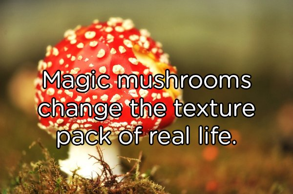 Shower Thoughts, part 88