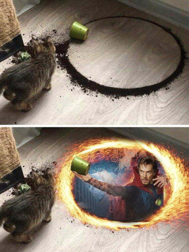 Fun With Photoshop
