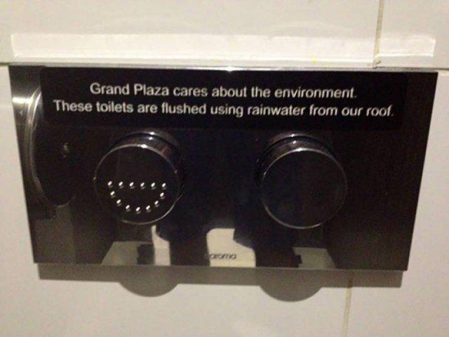 Eco-Friendly Designs