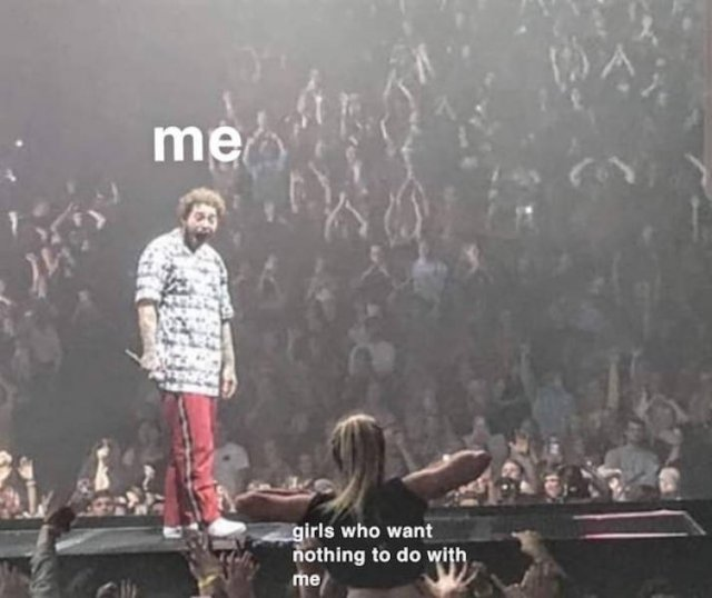 """""""Post Malone Being Flashed At A Concert"""" Memes"""
