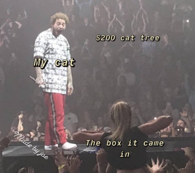 """Post Malone Clean: """"Post Malone Being Flashed At A Concert"""" Memes"""
