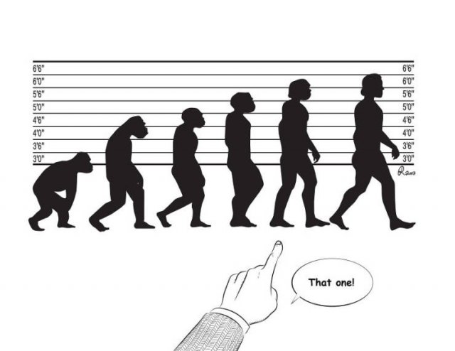 Funny Illustrations About The Evolution