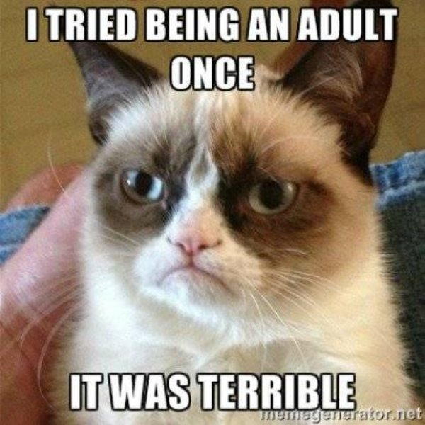 Memes About People In Their Thirties