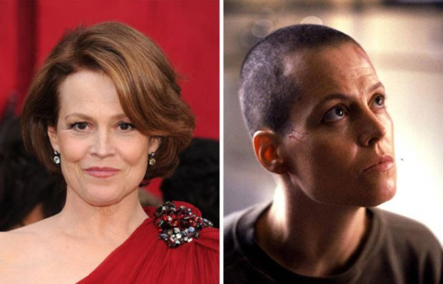 Famous People With And Without Hair