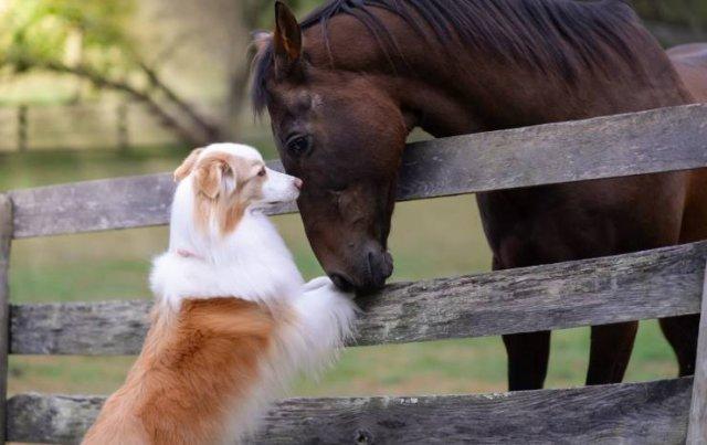 Beautiful And Interesting Photos