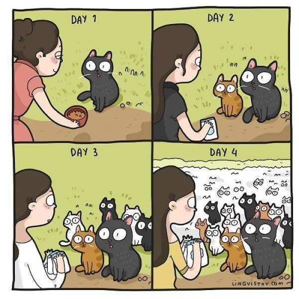 Comics About Cat And Its Owner
