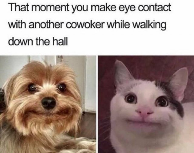 Random Funny Pictures, part 13