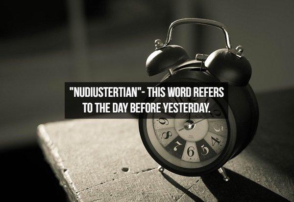 Amusing English Words