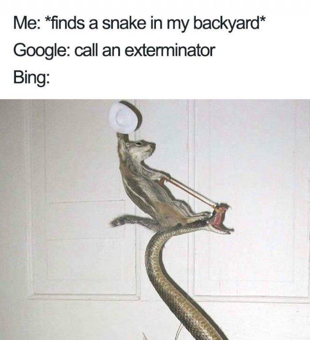 Google Vs. Bing Memes