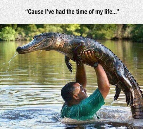 Random Funny Pictures, part 14