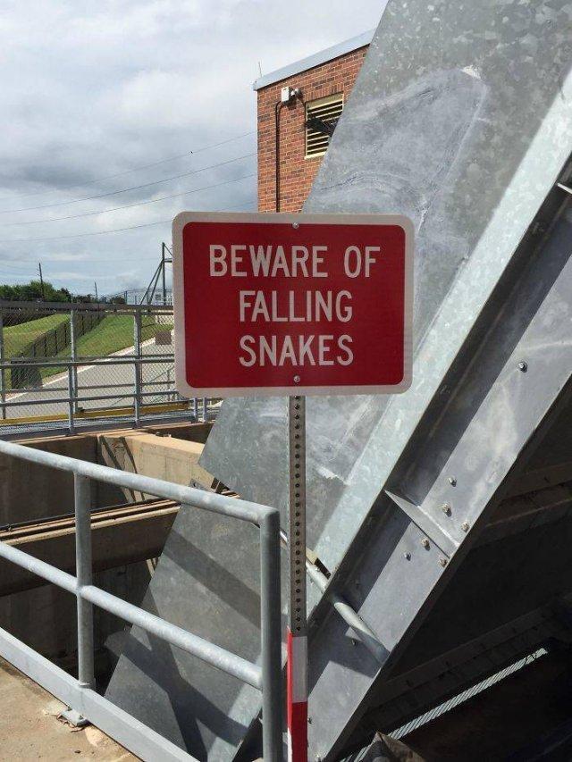Weird Signs