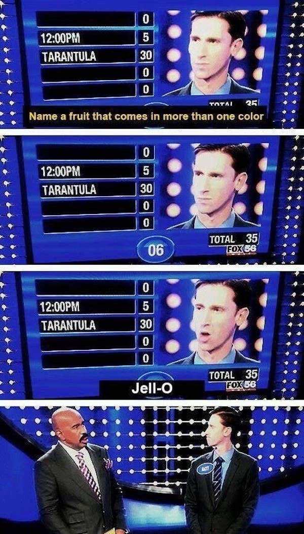 """Best """"Family Feud"""" Answers"""