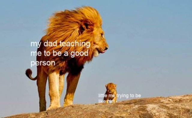 Wholesome Memes, part 5