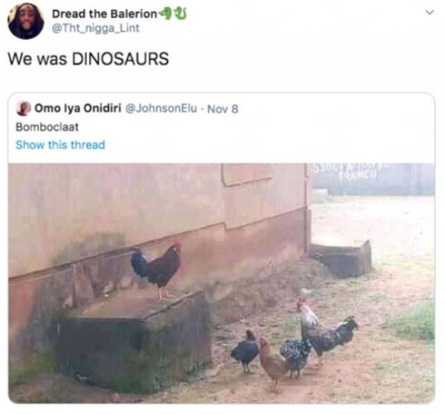 Random Funny Tweets