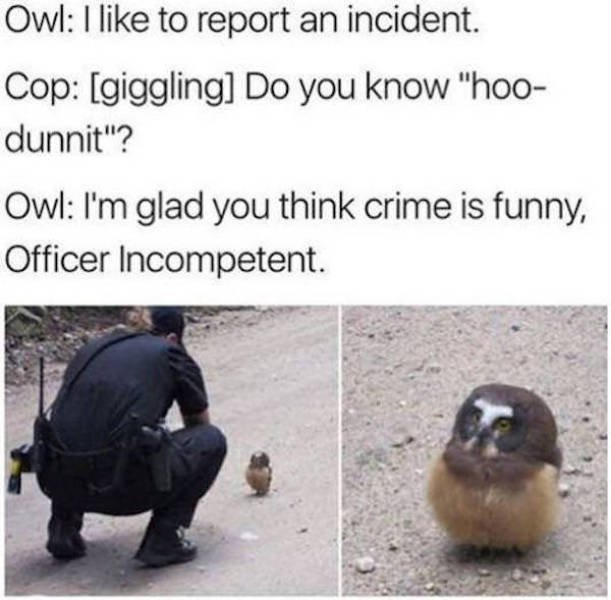 Police Memes, part 3