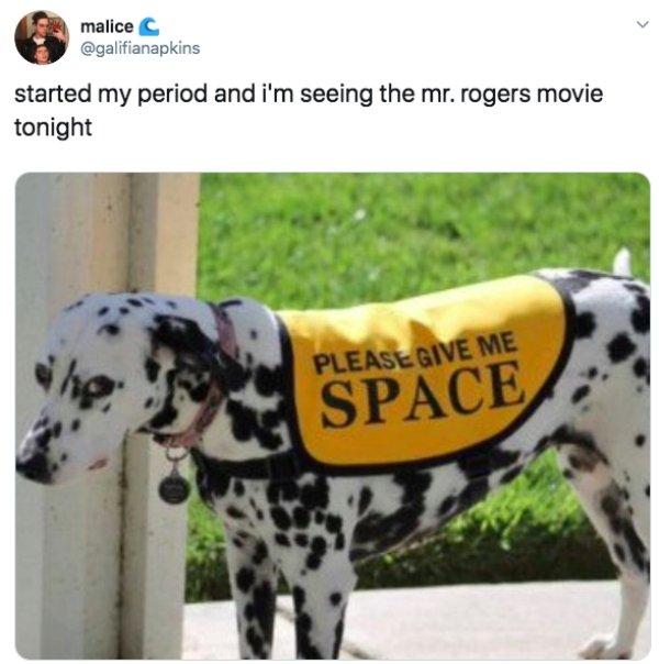 Mr. Rogers Memes