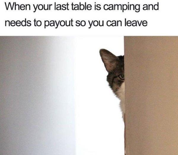 Random Memes, part 5